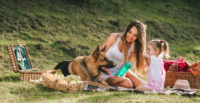 Are German Shepherds Safe With Kids Babies & Families?