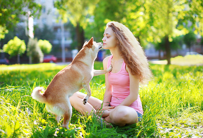 Dogs Feel When You kiss Them?