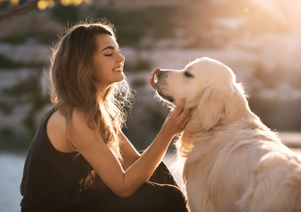 Is Kissing Your Dog Safe?